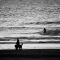 Surfer at Scheveningen Zuid